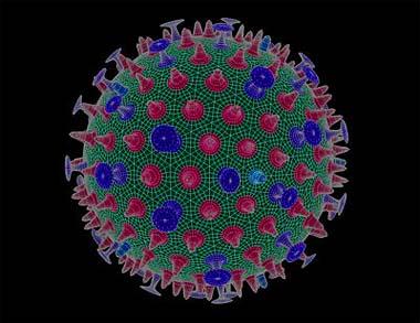 AVIAN FLU VIRUS - FAO
