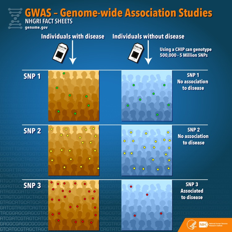 GWAS Infographic2a