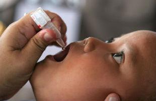 Polio drops - WHO