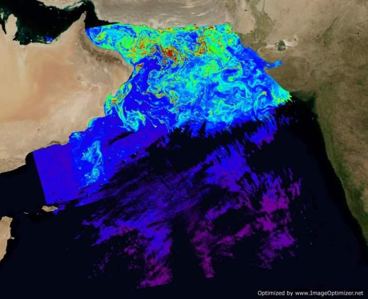 NASA's MODIS-Aqua chlorophyll  (18 February 2010)-Optimized