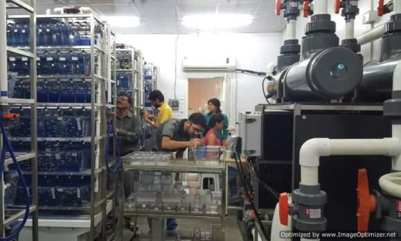 fish-facility-at-tifr-optimized