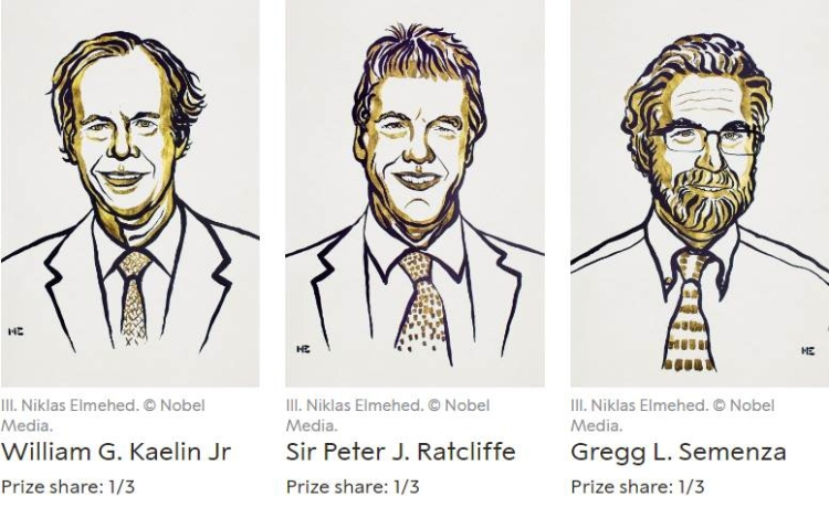 Nobel Prize winners - Medicine 2019-Optimized